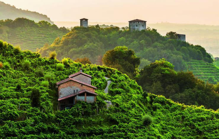 Les collines du prosecco reconnues par l'UNESCO