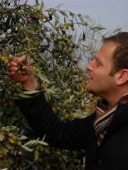 Savoir choisir une huile d'olive, un premier pas pour manger mieux