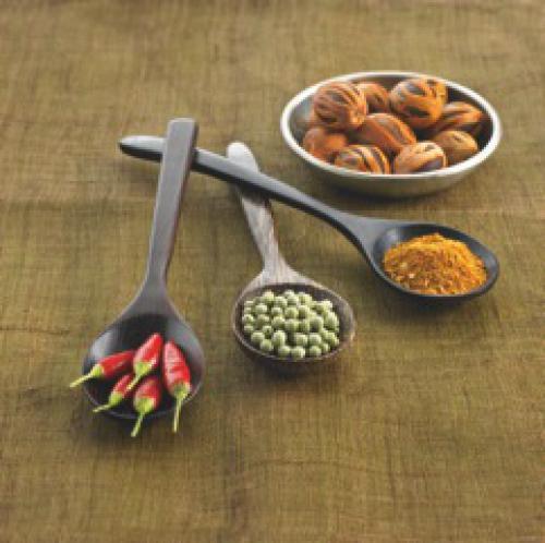Nouveaux épices par Wiberg