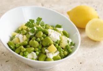 Salade Verde e Limone
